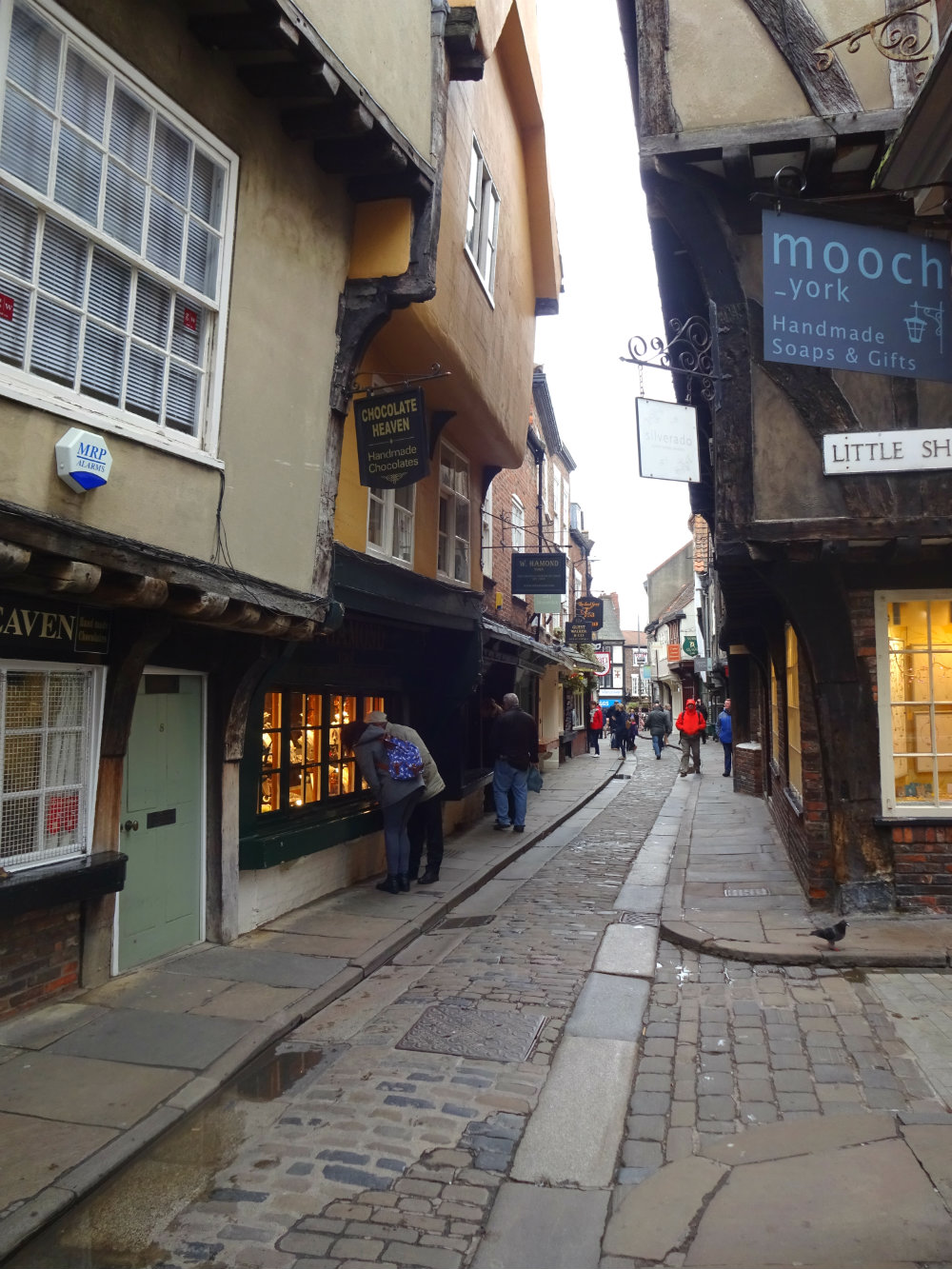 the shambles sunday
