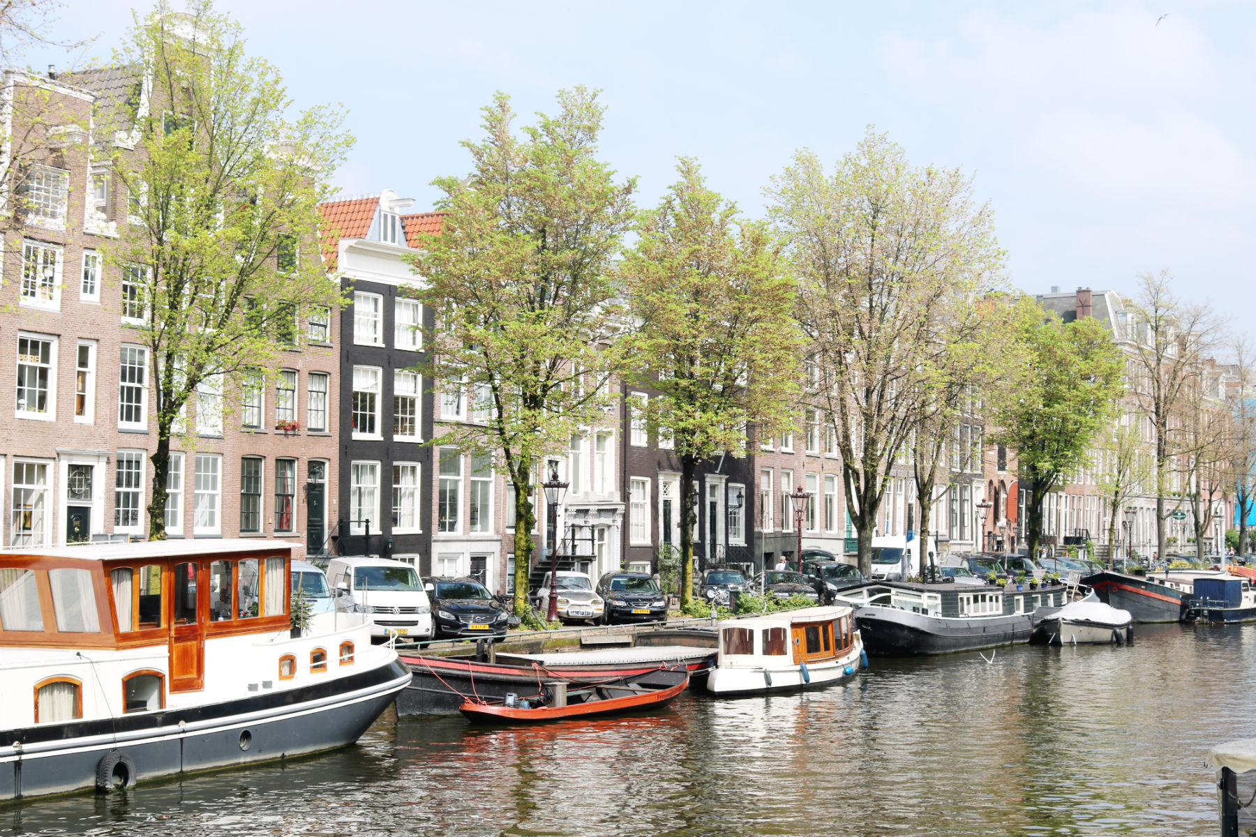 amsterdam canal with trees and boats
