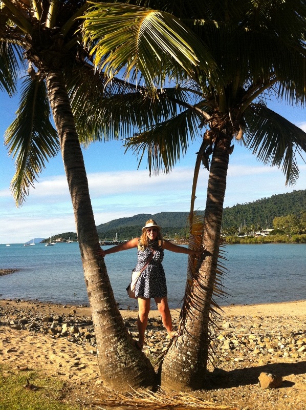 Climbing palm trees in Airlie Beach