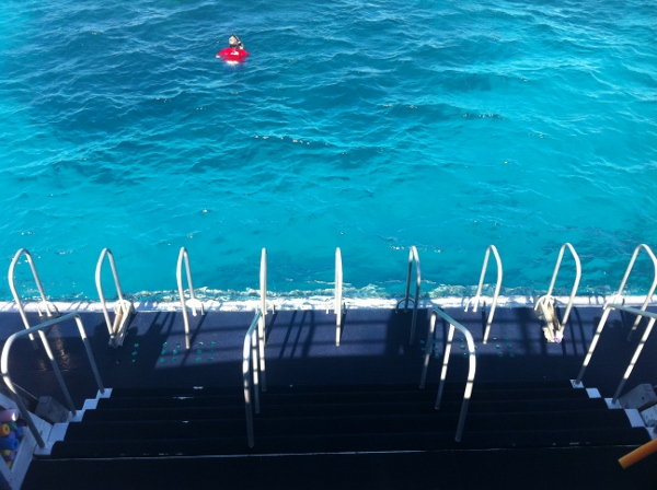 Snorkeling the Great Barrier Reef with Calypso Reef Cruises
